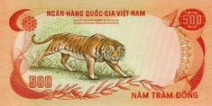 Vietnam Country, South Vietnam, Hanoi Vietnam, Vietnamese Dong, Tigers Live, Vietnam History, Old Photos, Big Cats, Retro