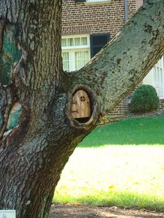 Cute little tree door!  I WILL do this one day.
