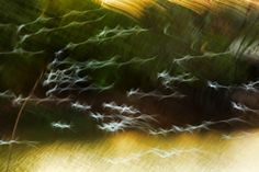 40 Beautiful Examples of Abstract Photography - The Photo Argus Movement Photography, Abstract Photography, Creative Photography, Portrait Photography, Nature Photography, Photography Ideas, Example Of Abstract, Abstract Images, Movement Pictures