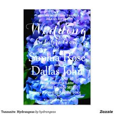 Tanzanite  Hydrangeas Card - romantic deep purple hydrangea flowers -customize for any occation