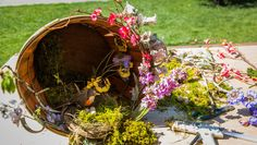 Easter is just around the corner! Why not spring up your porch w/ @kennethwingard's Bushel Wreath! Catch #homeandfamily weekdays at 10/9c on Hallmark Channel!