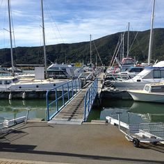 """See 37 photos and 1 tip from 161 visitors to Havelock Marina. """"Fuimos al festival de mussels! Marlborough Sounds, New Zealand, Boat, Dinghy, Boats, Ship"""