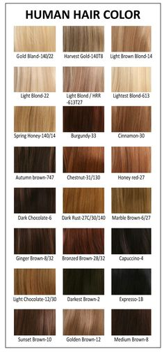 Wonderful Ion Red Hair Color Chart with Image of Hair Color ...