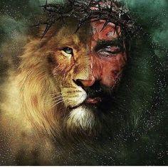 Lion of Judah Lion Images, Lion Pictures, Jesus Pictures, Jesus Wallpaper, Lion Of Judah Jesus, Jesus Drawings, Lion And Lamb, Christian Artwork, Saint Esprit