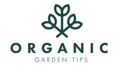 Organic Gardening Hacks – organicgardentips.com Straw Bale Gardening, Hydroponic Gardening, Organic Gardening, Gardening Tips, Water Garden, Herb Garden, Asparagus Garden, Garden Bed, Easy Garden