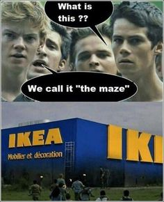 More memes, funny videos and pics on Maze Runner Funny, Maze Runner Cast, Maze Runner Movie, Maze Runner Quotes, Really Funny Memes, Stupid Funny Memes, Funny Relatable Memes, Hilarious, Funniest Memes