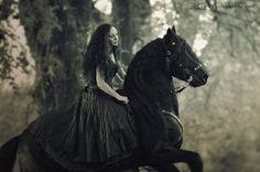 Medieval princess friesians - Google Search