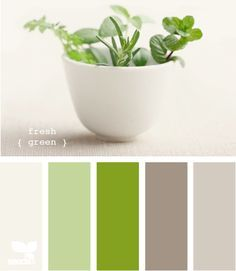 I think this is the color palette. Grey walls, white bedding and furniture, green accents.