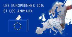 Qu'ont fait nos eurodéputés pour les animaux ? Méritent-ils encore votre confiance ? Découvrez en un coup d'œil les partis qui ont agi pour ou contre les animaux.