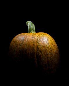 http://fineartamerica.com/featured/portrait-of-a-pumpkin-wendy-thompson.html