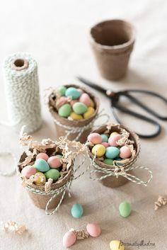 Mini Eggs in Mini Peat Pots for your Easter Table