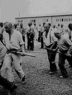 A photo of Jewish prisoners in 1938. Source: Dachau Memorial Museum