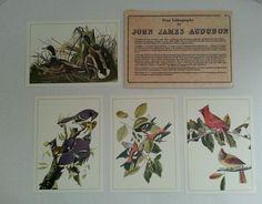 "4 John James Audubon Litho Repros 5""x7"" Birds & Duck Prints #Vintage"