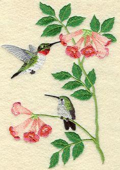 embroidery...hummingbirds                                                                                                                                                     Más