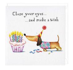 Make A Wish Dachshund Greeting Card