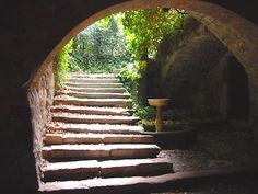 Passejada pel meandre del Riu Llobregat al seu pas pel Món Sant Benet #sortirambnens