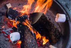 Picnics, Crafts and S'mores - get ideas to celebrate.