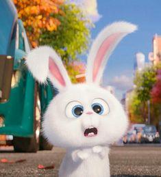 New Funny Disney Wallpaper Life Ideas Cute Bunny Cartoon, Cute Cartoon Pictures, Cute Pictures, Cartoon Cartoon, Cute Disney Wallpaper, Cute Cartoon Wallpapers, Snowball Rabbit, Rabbit Wallpaper, Pets Movie