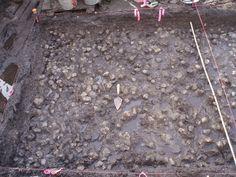 É a primeira prova de que as populações da América do Norte já cultivavam este alimento há quase quatro mil anos