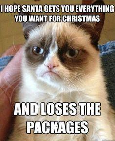 funny grumpy cat, christmas presents