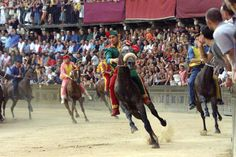 the most amazing horse race in the world, Palio