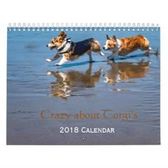 Crazy about Corgi's 2018 wall calendar - home gifts ideas decor special unique custom individual customized individualized