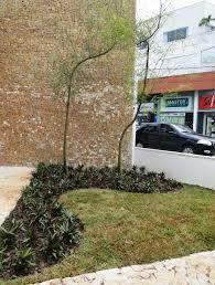 jardins cleans - Pesquisa Google