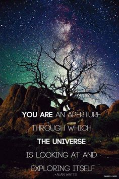 You are an aperture through which the universe is looking at and exploring itself. ~Alan Watts