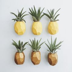 PRE-ORDER Pineapple Air Plant Magnet w/Air Plant (shipping in 2-3... ❤ liked on Polyvore featuring home, home decor, yellow home accessories, yellow home decor, pineapple home decor, pineapple home accessories and handmade home decor