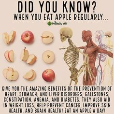 Holistic Health Remedies Health tips Health Facts, Health And Nutrition, Health And Wellness, Health Fitness, Fitness Hacks, Shape Fitness, Health Diet, Health Cleanse, Health Logo
