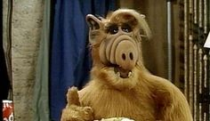 For those of you who weren't around during the ALF (Alien Life Form) was a cheesy sitcom about a family who adopts a furry extraterrestrial who enjoys eating cats and playing the drums. 80 Tv Shows, Movies And Tv Shows, Sweet Memories, Childhood Memories, Aliens, Alien Life Forms, Back In My Day, Oldies But Goodies, Ol Days