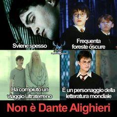 Oh mah gosh Harry Potter Tumblr Posts, Harry Potter Anime, Harry Potter Cast, Harry Potter Quotes, Harry Potter Love, Harry Potter Fandom, Harry Potter World, Date, Einstein