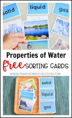 FREE Properties of Water Sorting Cards