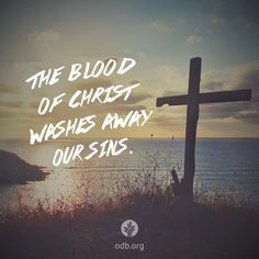 """Mary Ann believed in God and His Son Jesus, but she struggled with why Jesus had to shed His blood to bring salvation. Who would think of cleansing something with blood? Yet the Bible says, """"..."""
