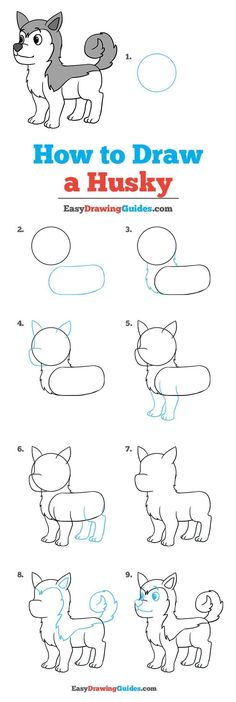 How to Draw a Husky - Really Easy Drawing Tutorial Learn how to draw a . - How to Draw a Husky – Really Easy Drawing Tutorial Learn how to draw a husky: simple step-by-step - Easy Drawing Tutorial, Drawing Lessons, Art Lessons, Drawing Techniques, Cartoon Drawings, Cute Drawings, Christmas Drawings For Kids, Husky Drawing, Drawing Lips