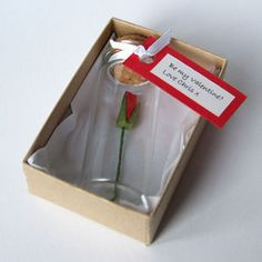 Tiny Single Rose In A Bottle With Personalised Message - cards