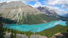 El lago Peyto es un lago de origen glaciar, sus aguas heladas cristalinas junto con las montañas crean un paraje incomparable. Está localizado en uno de los parque nacionales de las Montañas Rocosas canadienses, en la provincia de Alberta, Canadá.