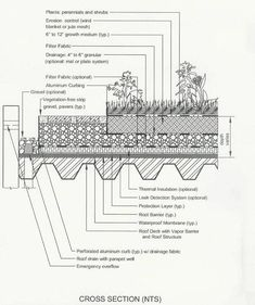 As you most likely picture, developing your very own rooftop garden is not as easy as growing bushes in the ground, but with study, great planning and decision, such a job can substantially upgrade your way of living. Landscape Architecture Drawing, Green Architecture, Architecture Details, Landscape Design, Garden Design, Green Roof Benefits, Living Roofs, Roof Detail, Architectural Section