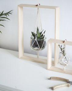 suspension plante diy cadre