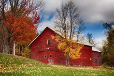 Maine-barn-red-foliage