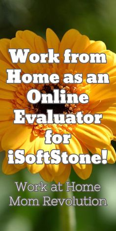 work from home education consultant jobs