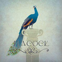 Peacock Print Original Design Animal Alphabet by RedGateArts