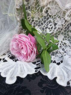 Une rose posée sur la dentelle