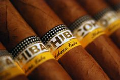 Cuban Cohibas, I have several in my humidor just waiting for that special opportunity :)  these are not your casual smokes