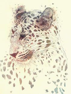 Leopard Juxtaposé by Sahir Khan