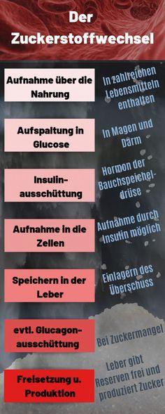 Diabetes, Stress, Life, Recipes, Mathematical Analysis, Insulin Resistance, Metabolism, Foods, Psychological Stress