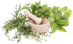 Herbs represent the most effective Ayurvedic approach to healing illness. In Herbology, there are numerous herbs which are a kind of miracle in itself. Today we will be making you aware of such 5 Empowering herb in Ayurveda science. Ayurveda is believed to be the oldest healing science in existence, forming the foundation of all …