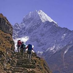 Trek to Base Camp Mt Everest and no further!