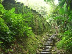 Close-up of some of the ruins of Ciudad Perdida, Colombia