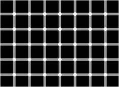 """Conte quantos pontos pretos você vê na imagem. Impossível contar porque eles desaparecem quando você foca a atenção neles. Conhecida como """"g..."""